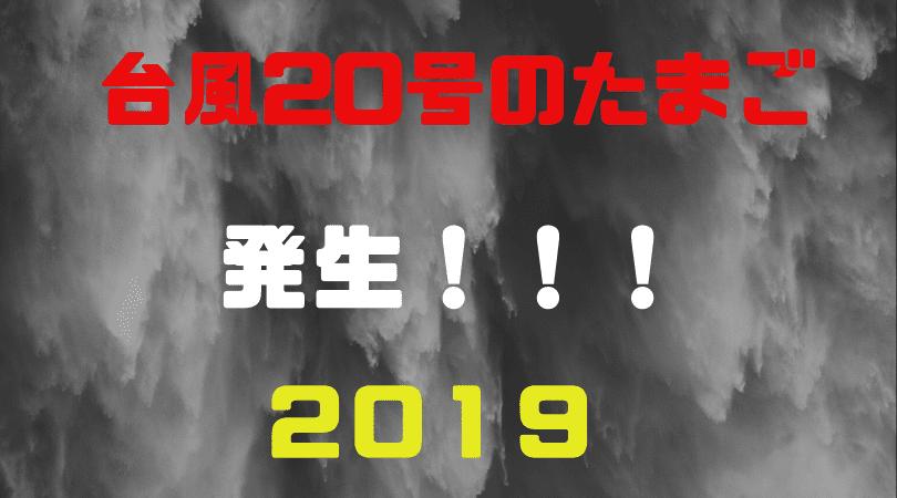 台風20号 たまご 最新進路情報